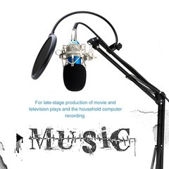 Studio Condenser Microphone Sound Recording Audio Wired For live Radio KTV Blue tube silver mesh head