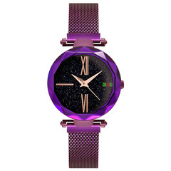 New fashions star ladies quartz watches magnet strap women Stainless steel plating mesh belt watchs purple one size