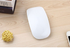 Laptop computer mouse white standard