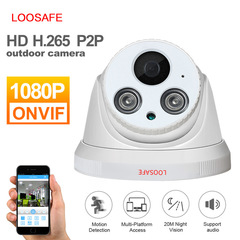 LOOSAFE Network Home Security Dome IP Camera 1080P Security Indoor IP Cam with Alarm Night Vision 720p ip camera