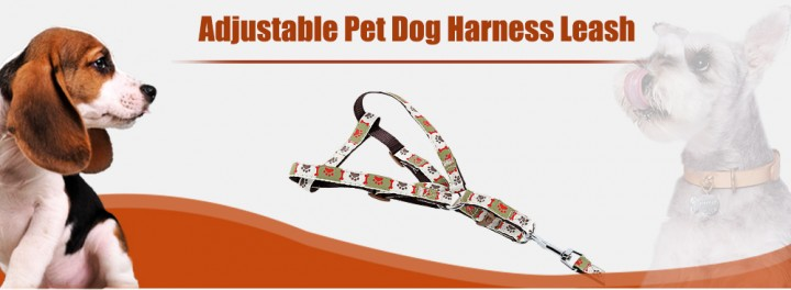 Cute Bone and Paw Print Adjustable Nylon Harness Leash for Pet Dogs and Cats