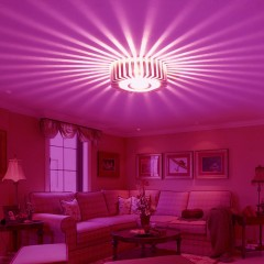 JIAWEN LED Wall Light Lamp Round Sunflower 1W Alum PINK LIGHT