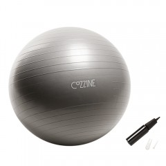 COZZINE Exercise Ball GRAY