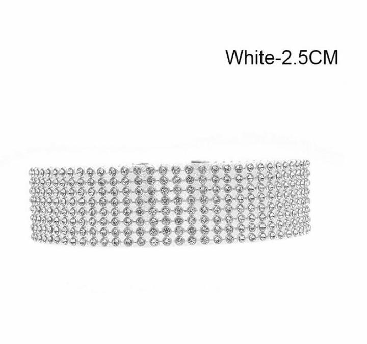 5ede74a71 Crystal Rhinestone Choker Necklace Women Wedding Accessories Silver Chain  Punk Gothic Choker Jewelry 2.5CM White