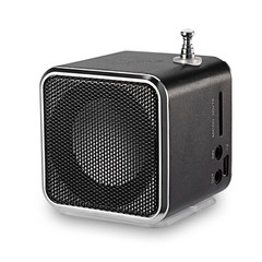 TD - V26 Mini Digital LCD FM Radio Speaker Micro S BLACK