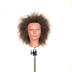 Cosmetology Ethnic Human Hair Manikin, Afro,come with free clamp dark brown 10 inches