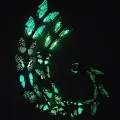 10Pcs 3D Butterfly Wall Art Decal Glow in The Dark Random Color&Pattern one size