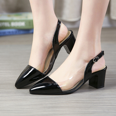 High Heels Women Shoes Plus Size Point Toe Thick Heel Clear Side Design Pump ComFOR SCHYTBT black 39