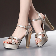 High Heel Women Shoes Plus Size Platform Sandals Cross Band Upper Design ComFOR SCHSDJC gold 38