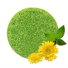 Natural Shampoo Soap Non-Silicone Oil Hair Washday Plant Extract Scalp Protect Homeliving Bathroom Mint Chamomile 55g
