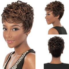Favored One - 1 piece New Luxury Beauty Short Curly Wigs Hair Daily Workplace Wigs For Lady Women same as picture same size