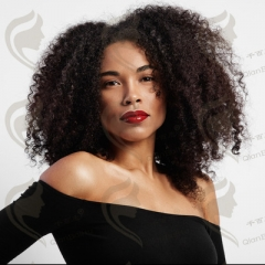 Wig Short Afro Kinky Curly Wigs for Black Women Black Synthetic Wigs African Hairstyles as picture like picture