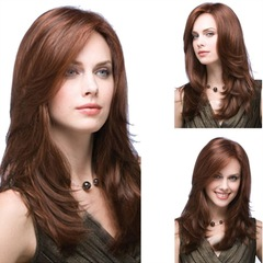 Fashion long curly brown wigs sloping bangs high temperature silk wig as picture long
