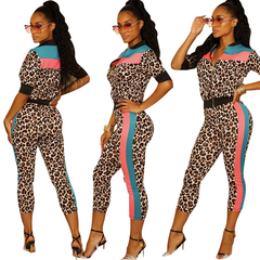Fashion Leopard Printed stitching two Piece Set Matching Sweatsuits Top Pant Jogger Women Tracksuits the picture s