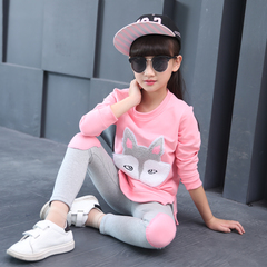 D-baby Autumn girls clothes sets T-shirt+ Pants 2pcs/set full sleeve clothing children active suits XQ012A pink 110(100cm)