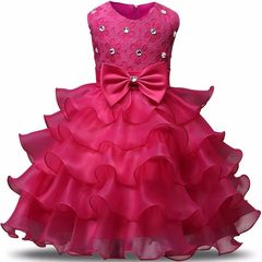 D-baby Girl flower embroidery dress kids wedding dress flower girl gauze dress birthday party dress CR002A 70cm
