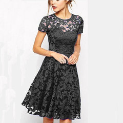 Dressy Short Sleeve o-neck Sexy Lace Zipper Dress Stylish collar and short sleeves BIG LARGE SIZE s black