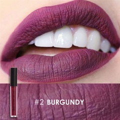 FOCALLURE Waterproof Matte Liquid Lipstick Moisturizer Long Lasting Cosmetic Beauty Makeup #2