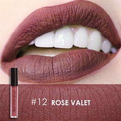 FOCALLURE Waterproof Matte Liquid Lipstick Moisturizer Long Lasting Cosmetic Beauty Makeup #12