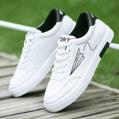 Spring and Summer  New Small White Men's Shoes Feather patterns 43