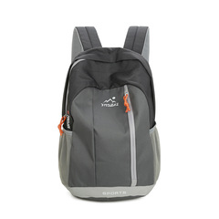 Unisex Casual Backpack  Waterproof Nylon15L&20L Backpacks For Adult & Children Travel Backpack men grey small
