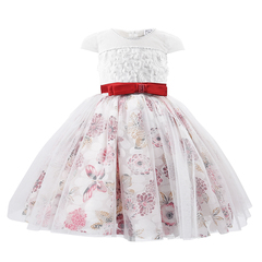 Kids Dresses For Girls Print Mesh Princess Birthday Dress Kids Prom Robe for 2 11 Years Dress red 2t-3t