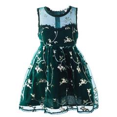 Cielarko Lace Girls Dress Tulle Princess Pink Party Dresses Sleeveless Flower Girl Dress green 2t