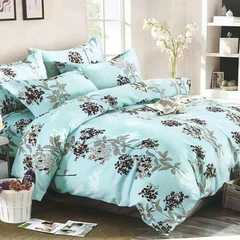 4 Pcs of Duvet Set ( 1 Duvet, 2 Pillow cases and 1 Bed-sheet multicolored 5*6