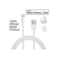 iPhone Charger USB Data Cable iPhone Plus iPad and iPod white normal