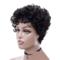 Premium 8 inch short wigs Small roll short hair women wigs short hair ladies short curly wigs hair SHS-105A 8 inch