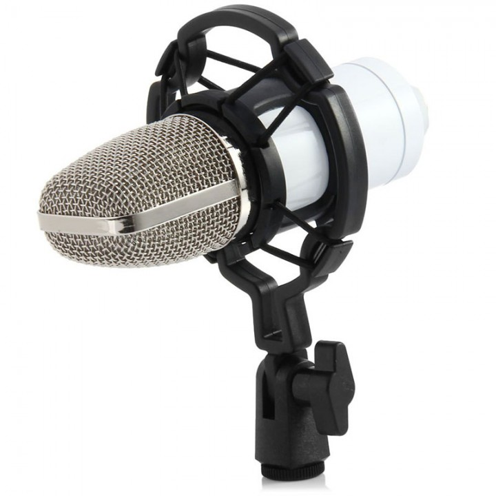 BM - 700 Condenser Sound Recording Microphone with Shock Mount White One size none