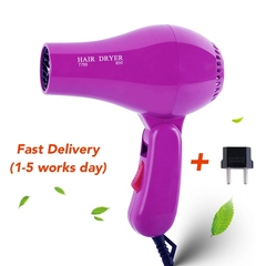 FE Foldable Portable Mini Hair Blow Dryer 850W Traveller Hair Dryer Compact Blower 220V as picture 14*20cm