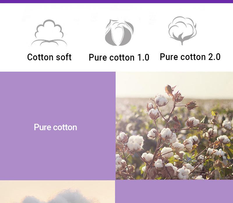 Softcare Sanitary Pad Breathable Cotton 285mm-10 Pads per Packet purple 3