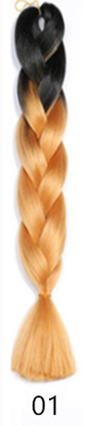 fashion beautiful colour  Gradation  Plait Dirty plait  Receiving rope Wig 01 60cm