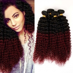 100% Unprocessed Virgin Hair Kinky Curly Style Ombre Human Hair 1pc/100g  for Valentine's Day Wine Red 12inch