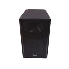 GoldenTech AA-111 Single Speaker 15