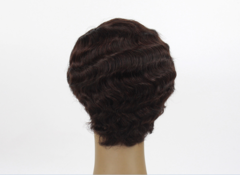 Small curly wig short fluffy head small curly hairstyle European and American wig set rose net t4/30 short hair