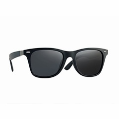 BRAND DESIGN Classic Polarized Sunglasses Men Women Driving Square Frame Sun Glasses Male Goggle C02 one size
