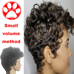 New Women Fashion Synthetic Wig Small Curly Hair Fiber Head Cover Wave Lady Wigs Beauty Black Wig black 8CM