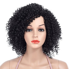 Hot-selling Fashion Charm African Volume Women's Short Explosive Head Wigs Skewed and inclined bangs black 14inch