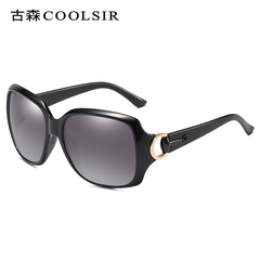 HotOne Fashion Vintage Sunglasses Women Luxury Brand Polarized Sunglasses COOLSIR-3609 black polarized