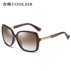 HotOne Fashion Vintage Sunglasses Women Luxury Brand Polarized Sunglasses  COOLSIR-8805 brown polarized