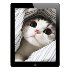 Certified Refurbished Tablet Apple iPad4 Apple Tablet ipad 4 16GB/32GB - 5 MP + 2 MP 9.7-inch wifi black(16gb+wifi)
