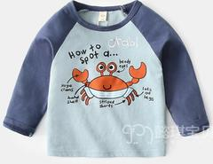 Baby Boys Clothing  Long Sleeve T-shirt Blue blue 90 cotton