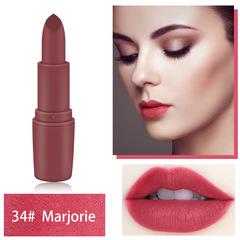 New arrival Lipstick Matte Waterproof Velvet Lipstick Pigments Makeup Matte Lipsticks Beauty Lips #34