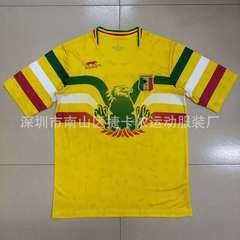 2019 Egypt african cup football costume national team main field ball suit