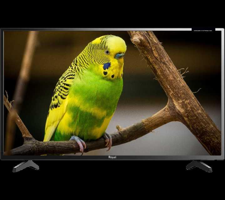 Royal 24″ TV Digital Television Black 24