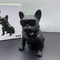 Creative Intelligent Lighting Wireless Handheld Subwoofer Bluetooth speaker black standard