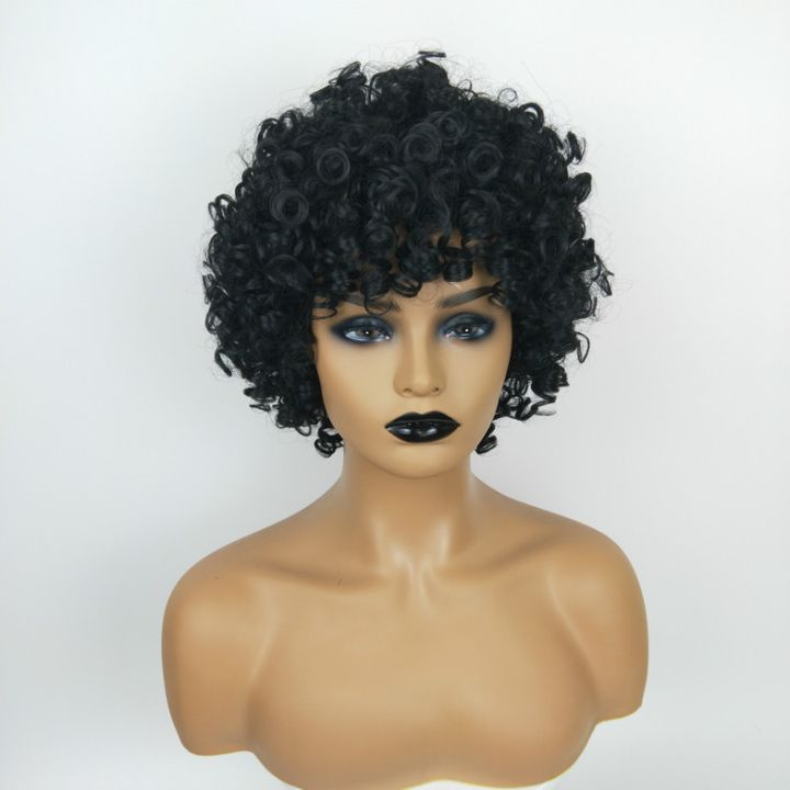 European and American Fashion Ladies Short Curly  Wig African Black Hair Wigs For Women black as picture 14