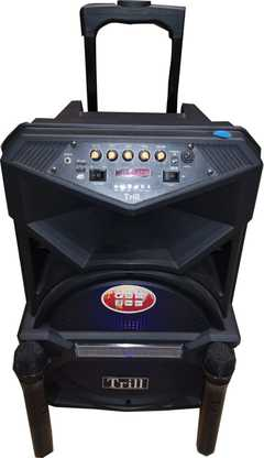 Trill TD-D250 Rechargeable Trolley Speaker (12